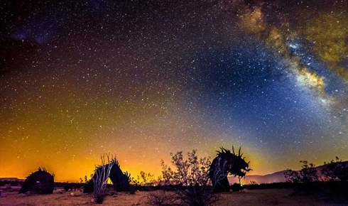 Star-lit Sculptures in the Desert